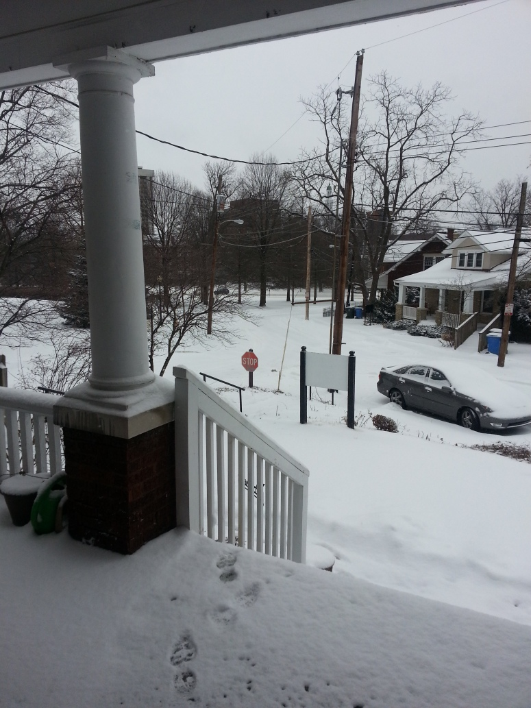 View from the porch March 3, 2014