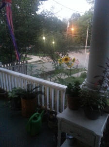 Sunflowers peek over the porch