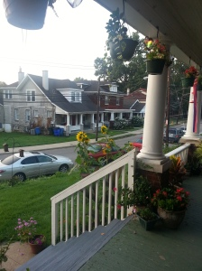 Early morning.  Can you glimpse the newly painted porch steps?