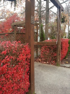 Looking into the prayer garden at St. John's Episcopal Church, Corbin, KY